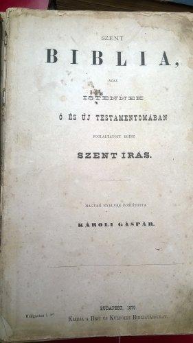 Biblia_1875.jpg