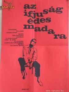filmplakát 1962