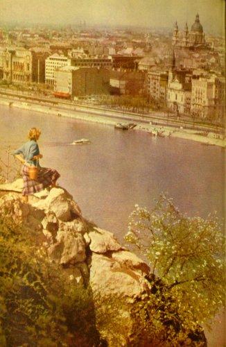 Dunapart részlet