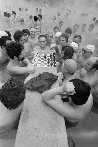 Sakkozok