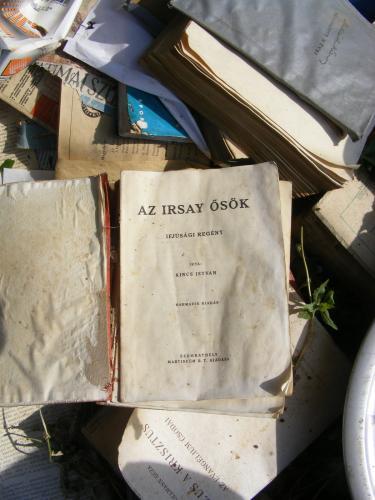 Könyvek a szemétben