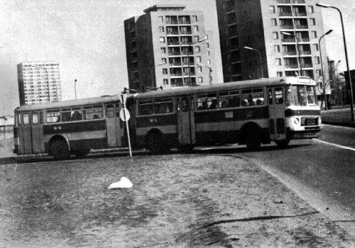 1-es busz a Szőnyi úton
