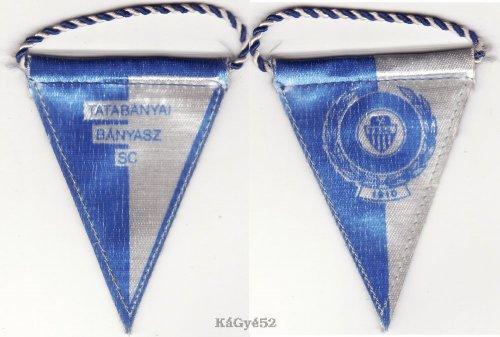 Tatabányai Bányász SC