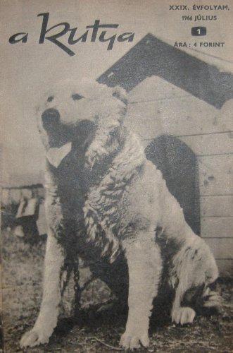 Kutya újság