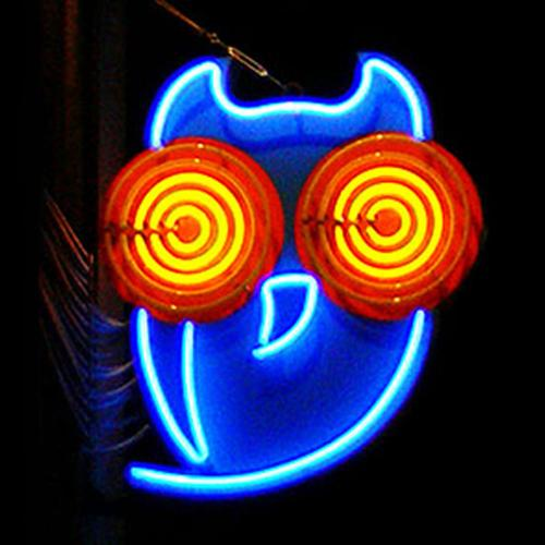 Antikvárium bagoly neon este