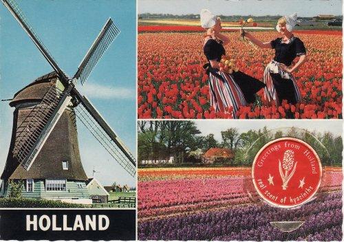 Hollandia - Tulipánország