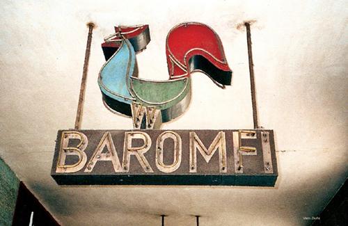 Baromfi neon kakas