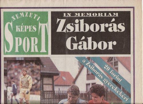 Zsiborás Gábor