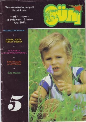 Süni magazin
