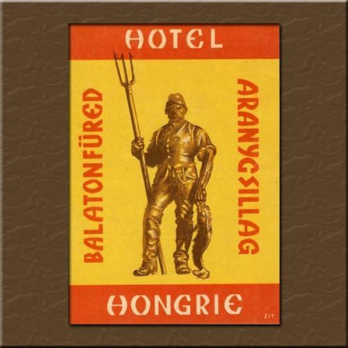 Balatonfüred Aranycsillag Hotel bőröndcímke