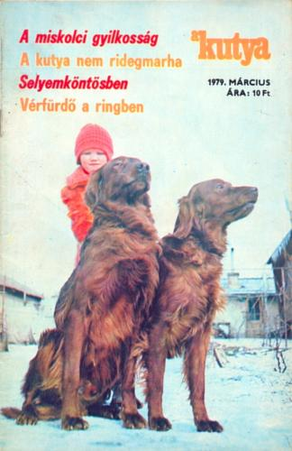 Kutya havilap újság