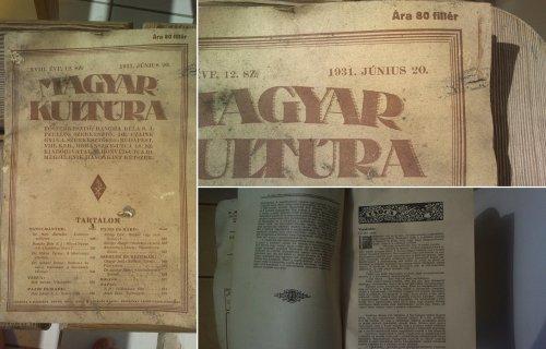 Magyar Kultúra