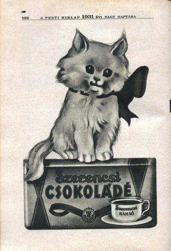 Szerencsi csokoládé kakaó