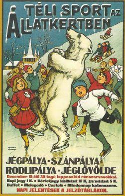 Téli sport az állatkertben